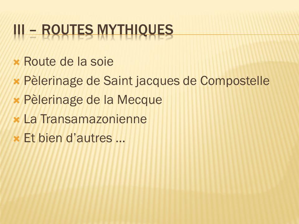 Route de la soie Pèlerinage de Saint jacques de Compostelle Pèlerinage de la Mecque La Transamazonienne Et bien dautres …