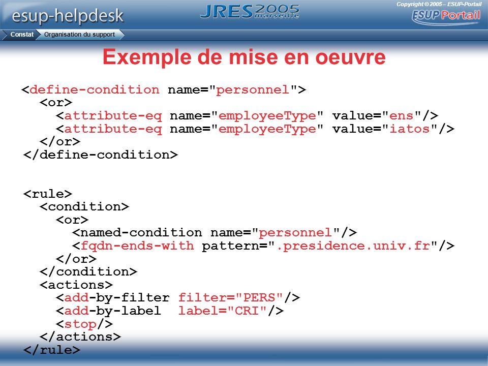 Copyright © 2005 – ESUP-Portail Exemple de mise en oeuvre ConstatOrganisation du support