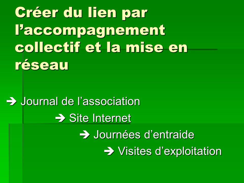 Créer du lien par laccompagnement collectif et la mise en réseau Journal de lassociation Journal de lassociation Site Internet Site Internet Journées
