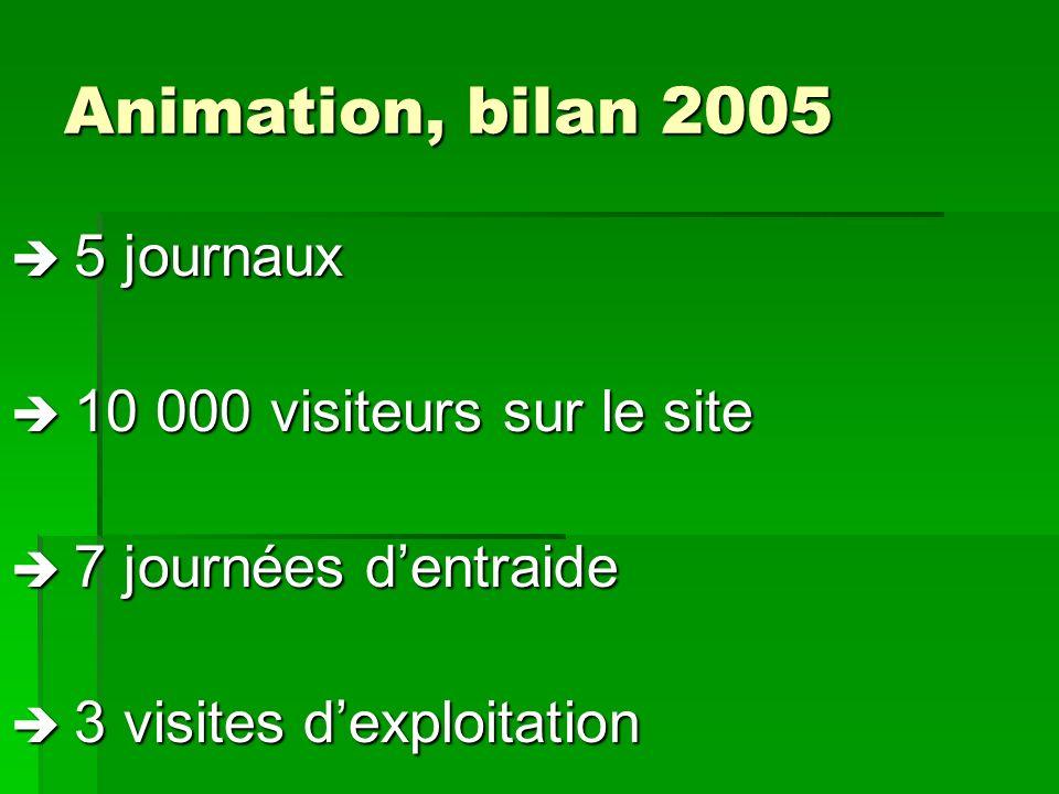 Animation, bilan 2005 5 journaux 5 journaux 10 000 visiteurs sur le site 10 000 visiteurs sur le site 7 journées dentraide 7 journées dentraide 3 visi
