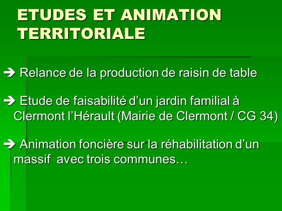 ETUDES ET ANIMATION TERRITORIALE Relance de la production de raisin de table Relance de la production de raisin de table Etude de faisabilité dun jard
