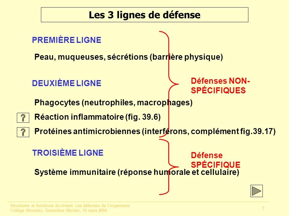 Structures et fonctions du vivant: Les défenses de lorganisme Collège Ahuntsic, Geneviève Bernier, 15 mars 2004 7 Les 3 lignes de défense PREMIÈRE LIG