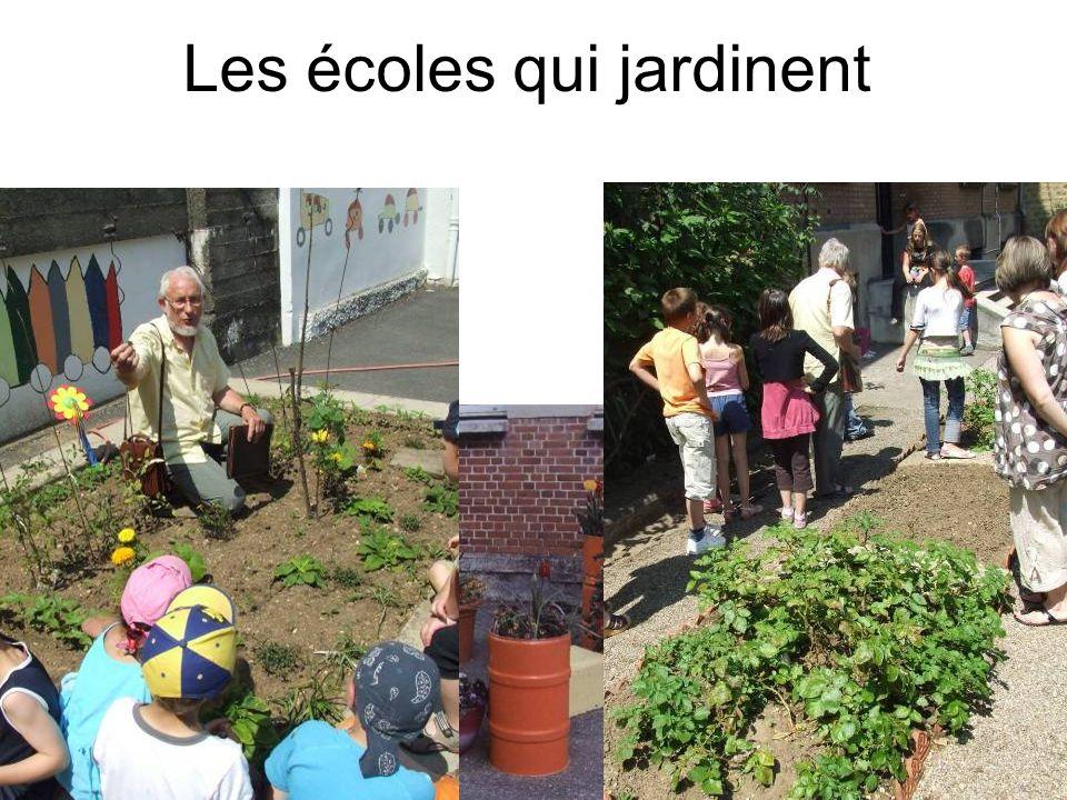 Les écoles qui jardinent