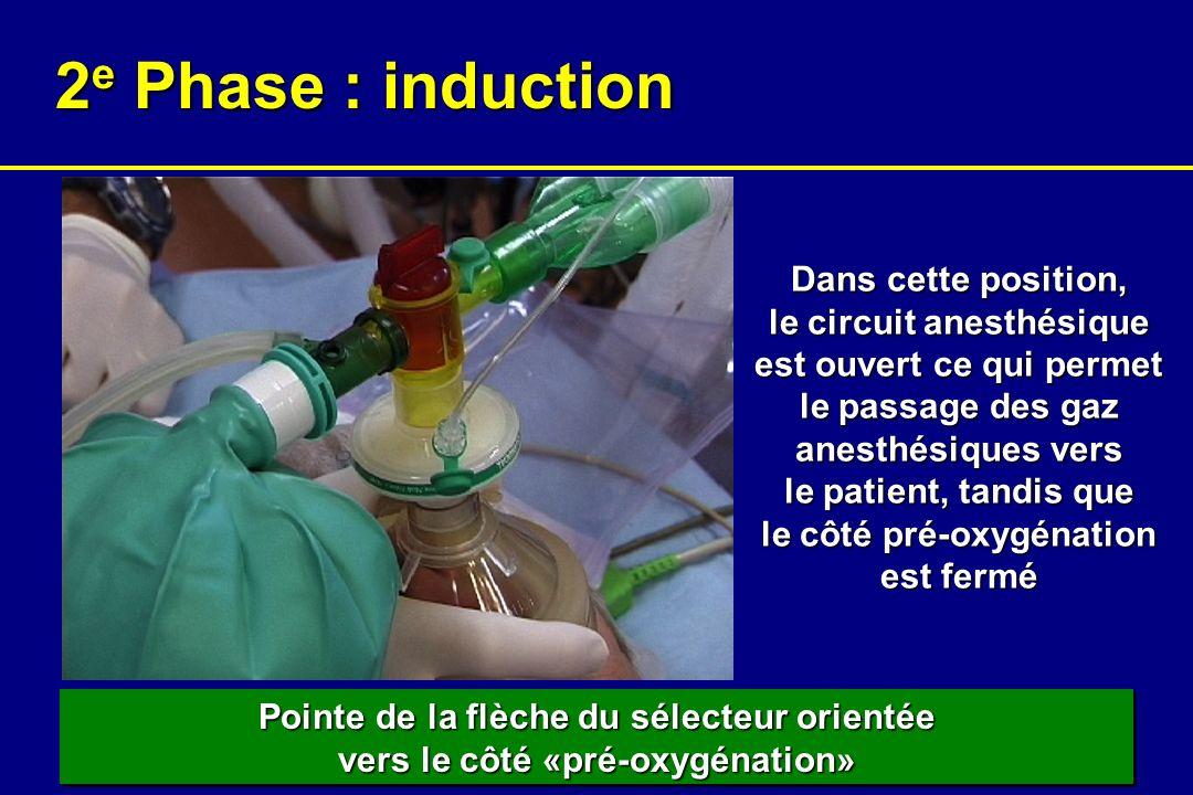 Pointe de la flèche du sélecteur orientée vers le côté «pré-oxygénation» 2 e Phase : induction Dans cette position, le circuit anesthésique est ouvert ce qui permet le passage des gaz anesthésiques vers le patient, tandis que le côté pré-oxygénation est fermé