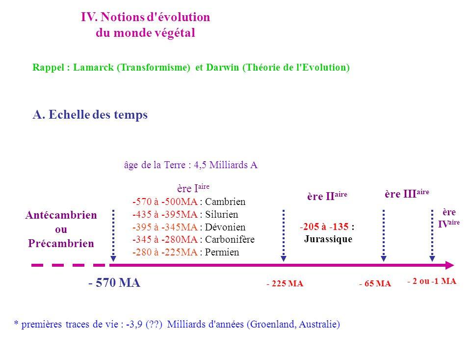 IV. Notions d'évolution du monde végétal Rappel : Lamarck (Transformisme) et Darwin (Théorie de l'Evolution) A. Echelle des temps âge de la Terre : 4,