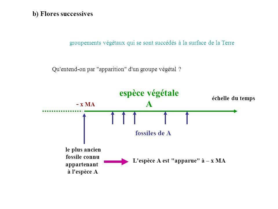 b) Flores successives Qu'entend-on par