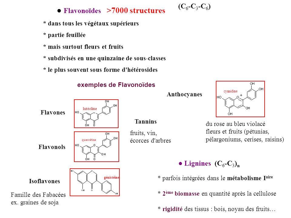 Flavonoïdes >7000 structures (C 6 -C 3 -C 6 ) * dans tous les végétaux supérieurs * partie feuillée * mais surtout fleurs et fruits * subdivisés en un