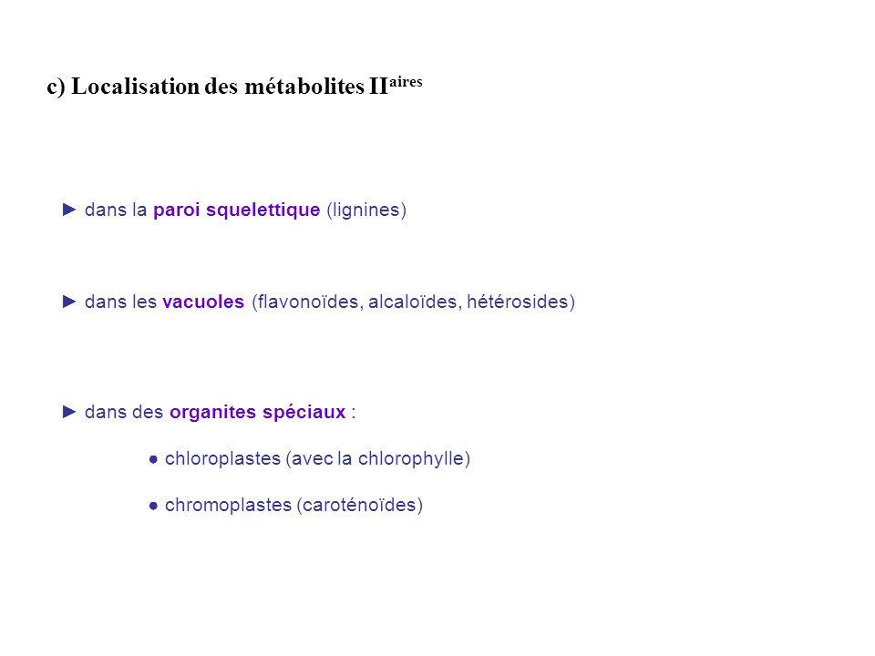 c) Localisation des métabolites II aires dans les vacuoles (flavonoïdes, alcaloïdes, hétérosides) dans des organites spéciaux : chloroplastes (avec la