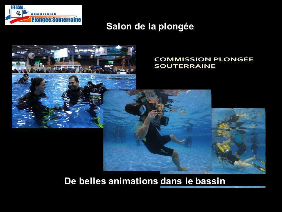 De belles animations dans le bassin http://idf.plongeesouterraine.org Salon de la plongée