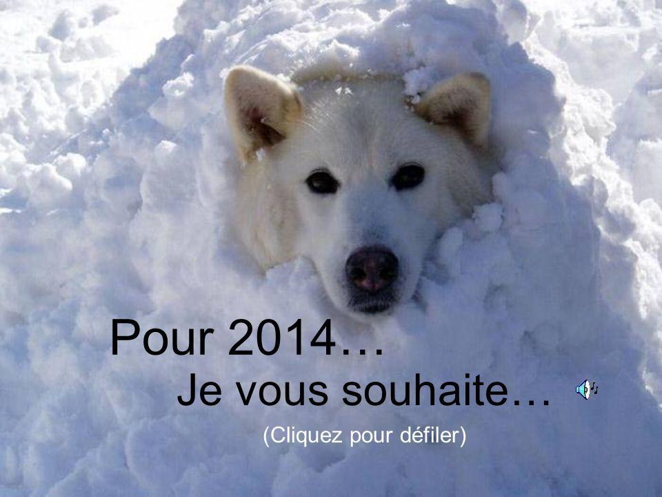 Pour 2014… Je vous souhaite… (Cliquez pour défiler)