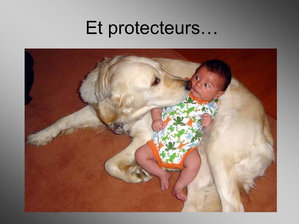 Et protecteurs…