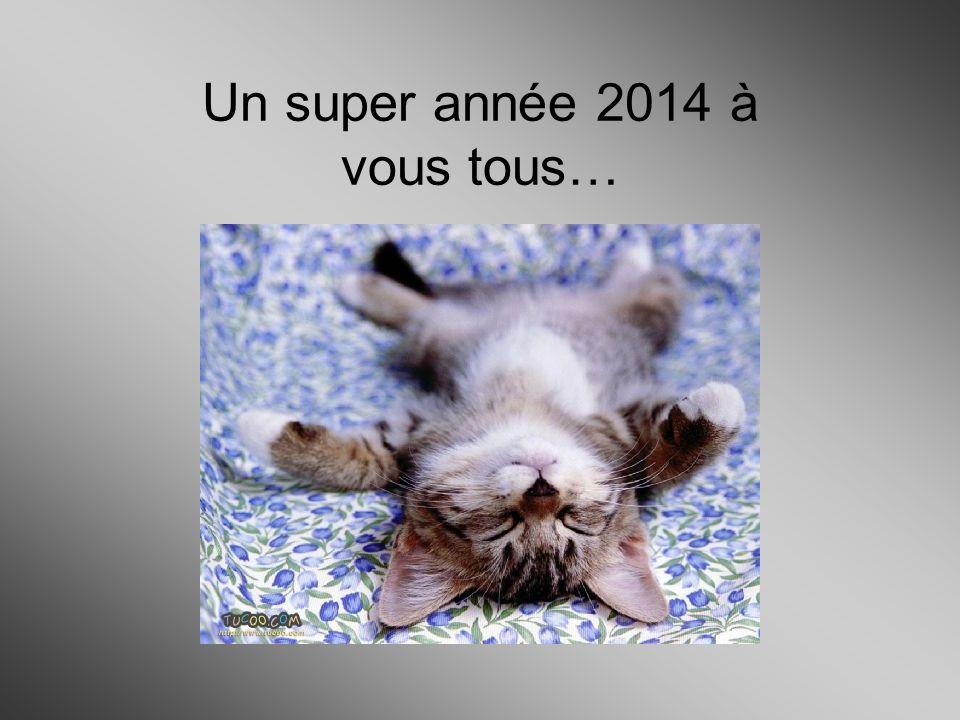 Un super année 2014 à vous tous…