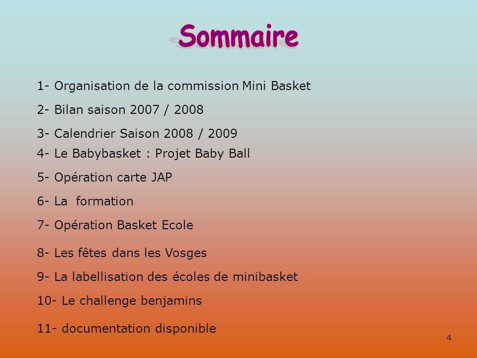 1- Organisation de la commission Mini Basket 2- Bilan saison 2007 / 2008 3- Calendrier Saison 2008 / 2009 4- Le Babybasket : Projet Baby Ball 5- Opéra