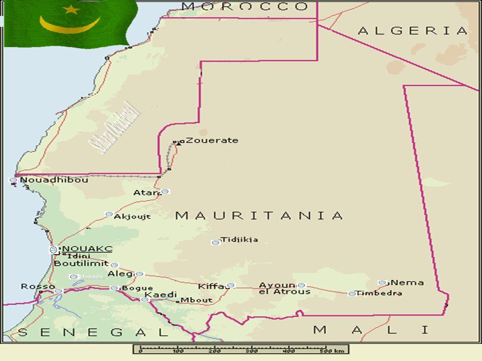 5 GEOLOGIE DE LA MAURITANIE La géologie de la Mauritanie comporte cinq ensembles structuraux : - La dorsale Réguibat correspond à un vaste bombement de socle (roche très vielle) que lérosion a réduit à létat dune plaine, parsemée de pitons granitiques.