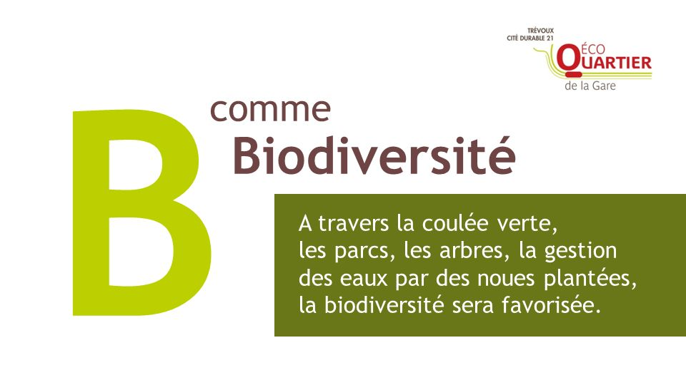 comme Biodiversité B A travers la coulée verte, les parcs, les arbres, la gestion des eaux par des noues plantées, la biodiversité sera favorisée.