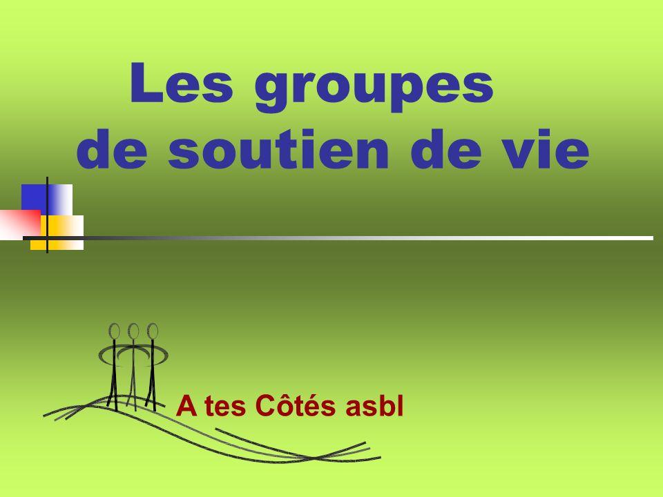 Les groupes de soutien de vie A tes Côtés asbl