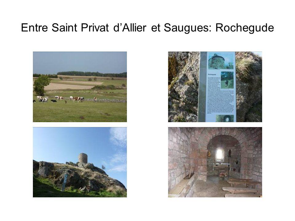 Entre Saint Privat dAllier et Saugues: Rochegude