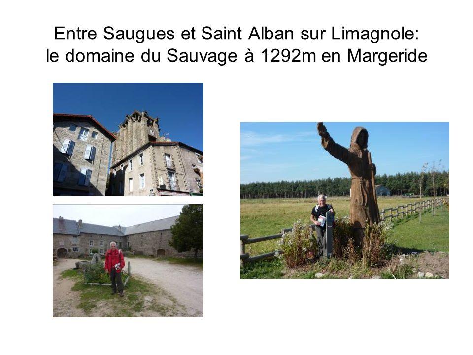 Nogaro, bientôt la fin du Gers..et une rapide incursion dans Les Landes