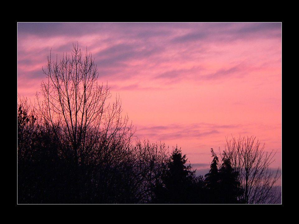 C'est de voir le soleil pointer À l'horizon Dont les chauds rayons font éclore Les bourgeons.