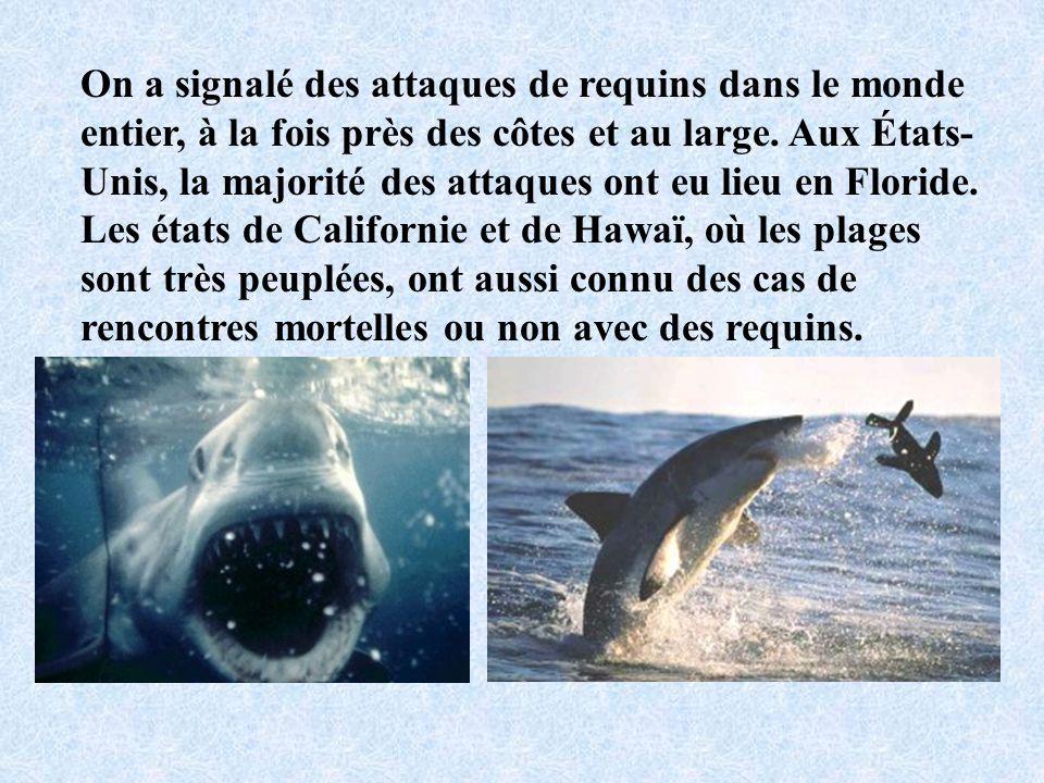On a signalé des attaques de requins dans le monde entier, à la fois près des côtes et au large.
