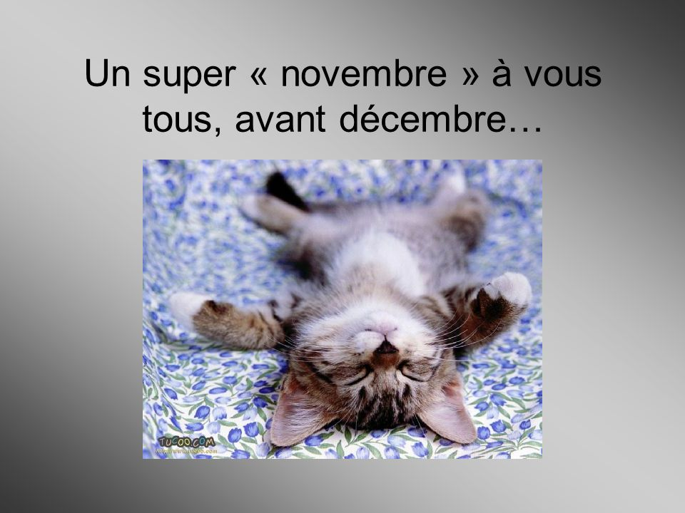 Un super « novembre » à vous tous, avant décembre…