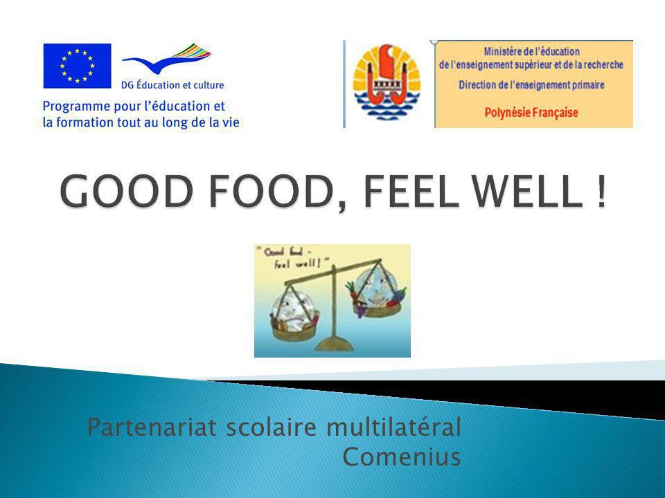 Partenariat scolaire multilatéral Comenius