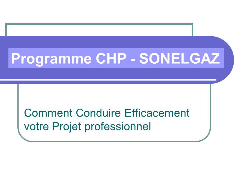 Comment Conduire Efficacement votre Projet professionnel Programme CHP - SONELGAZ