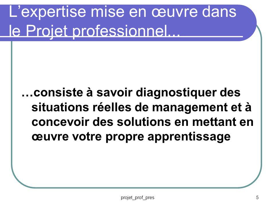projet_prof_pres5 Lexpertise mise en œuvre dans le Projet professionnel...
