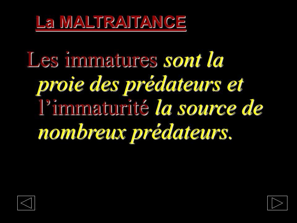 Les MALTRAITANTS Les prédateurs: chef politique, chef de sectes, maître à penser, pervers bienfaisants, manipulateurs, chef politique, chef de sectes,