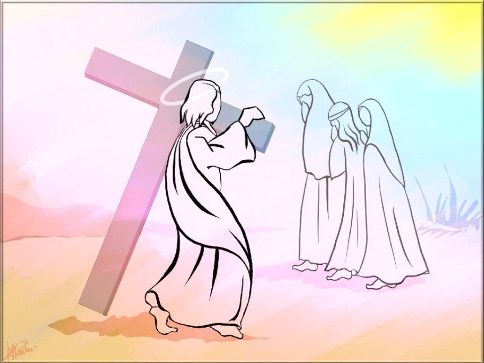 Jésus, Agneau de Dieu, qui marcha vers la croix, prends pitié de nous ! Jésus de Nazareth, consolateur des affligés, écrasé par les hommes, prends pit