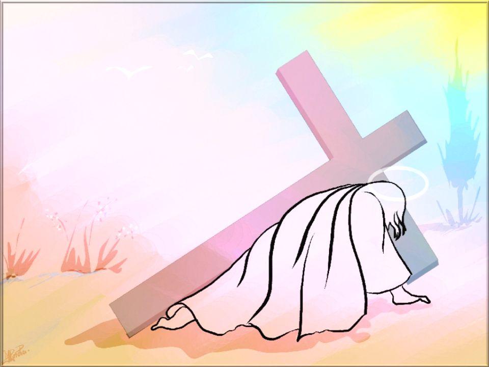 Jésus, lent à la colère et plein dAmour, vérité qui nous conduit, prends pitié de nous ! Jésus de Nazareth, toi qui relèves le pêcheur pardonné, prend