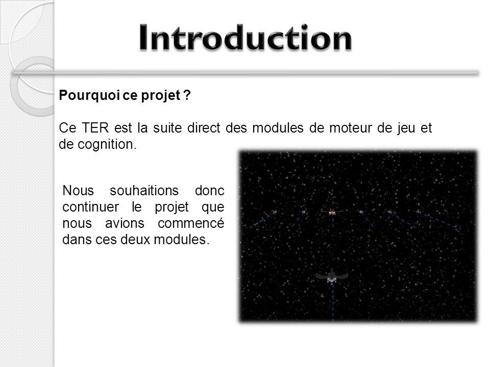 Pourquoi ce projet ? Ce TER est la suite direct des modules de moteur de jeu et de cognition. Nous souhaitions donc continuer le projet que nous avion