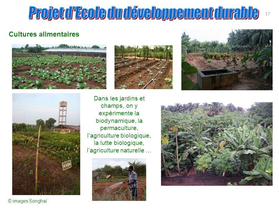17 Cultures alimentaires Dans les jardins et champs, on y expérimente la biodynamique, la permaculture, lagriculture biologique, la lutte biologique,
