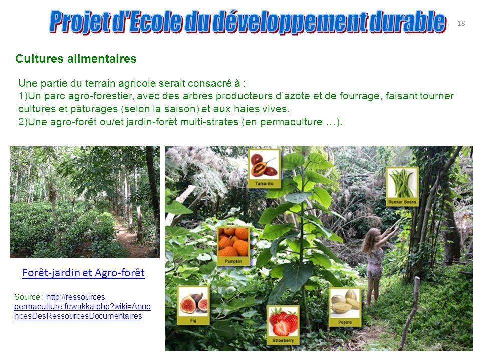 18 Cultures alimentaires Une partie du terrain agricole serait consacré à : 1)Un parc agro-forestier, avec des arbres producteurs dazote et de fourrag