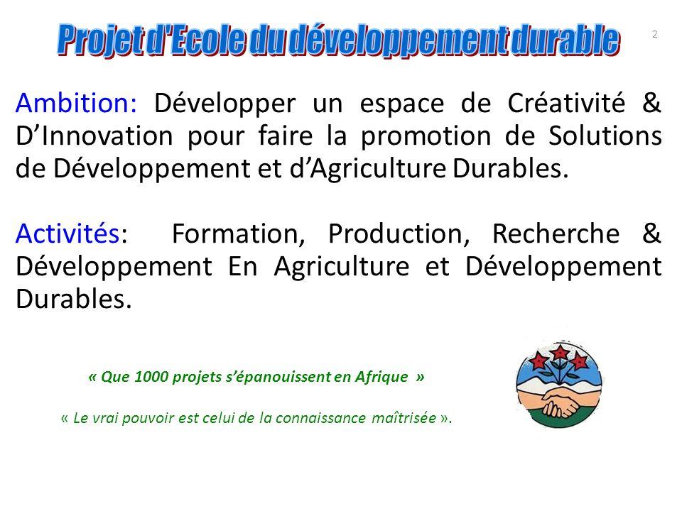 2 Ambition: Développer un espace de Créativité & DInnovation pour faire la promotion de Solutions de Développement et dAgriculture Durables. Activités