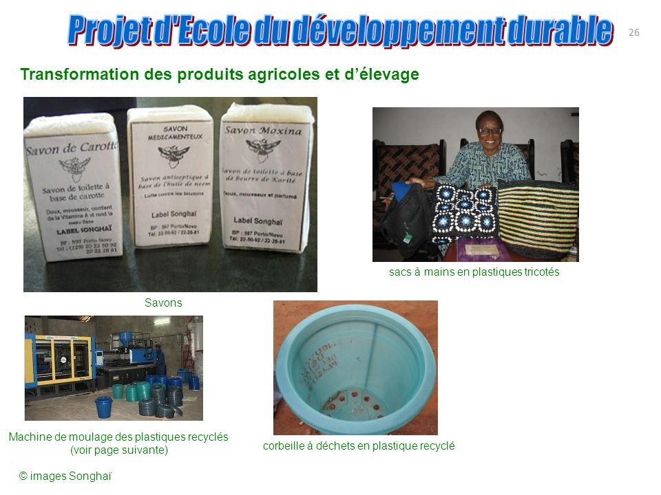 Transformation des produits agricoles et délevage 26 Savons sacs à mains en plastiques tricotés Machine de moulage des plastiques recyclés (voir page