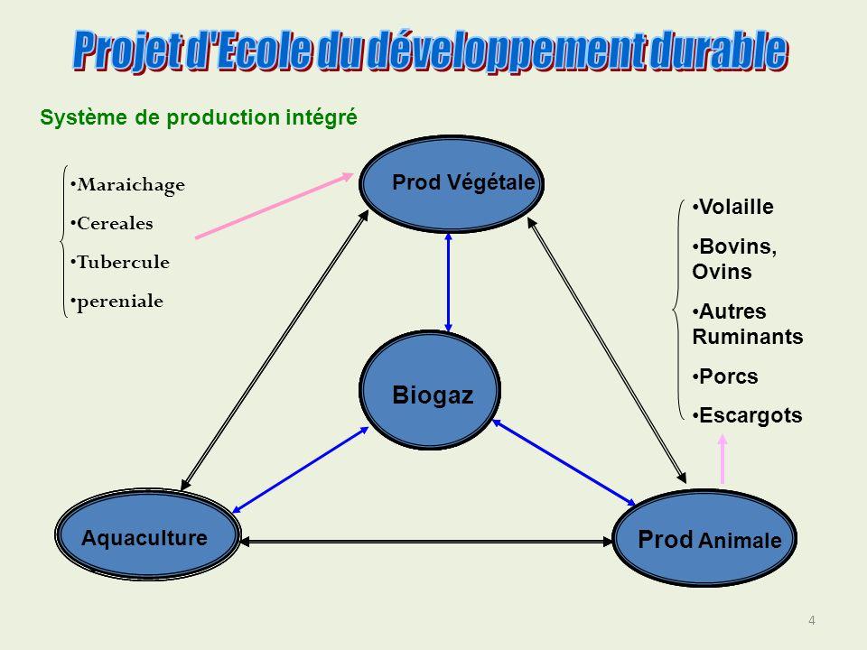 4 Prod Végétale Aquacultur e Prod Animale Biogaz Prod Animale Aquacultur e Prod Végétale Biogaz Prod Animale Aquaculture Prod Végétale Biogaz Maraicha