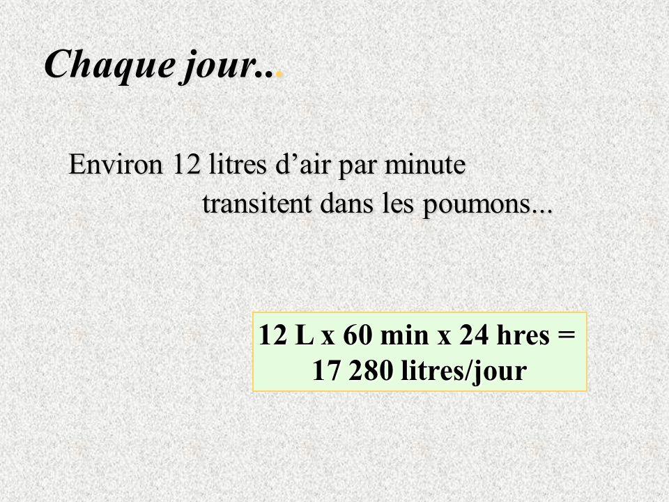 Chaque jour... Environ 12 litres dair par minute transitent dans les poumons... 12 L x 60 min x 24 hres = 17 280 litres/jour