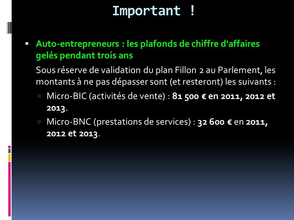 Important ! Auto-entrepreneurs : les plafonds de chiffre d'affaires gelés pendant trois ans Sous réserve de validation du plan Fillon 2 au Parlement,