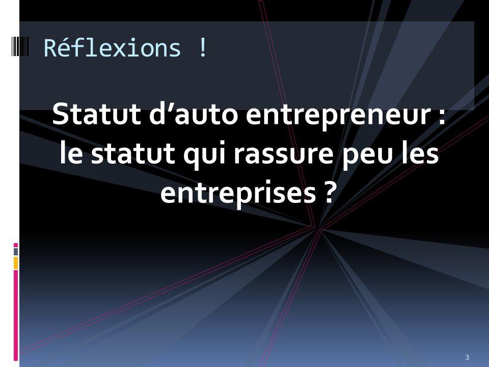 Statut dauto entrepreneur : le statut qui rassure peu les entreprises ? 3 Réflexions !