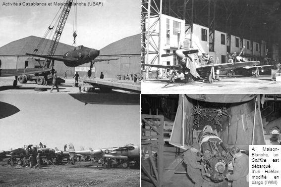 Activité à Casablanca et Maison-Blanche (USAF) A Maison- Blanche, un Spitfire est débarqué dun Halifax modifié en cargo (IWM)