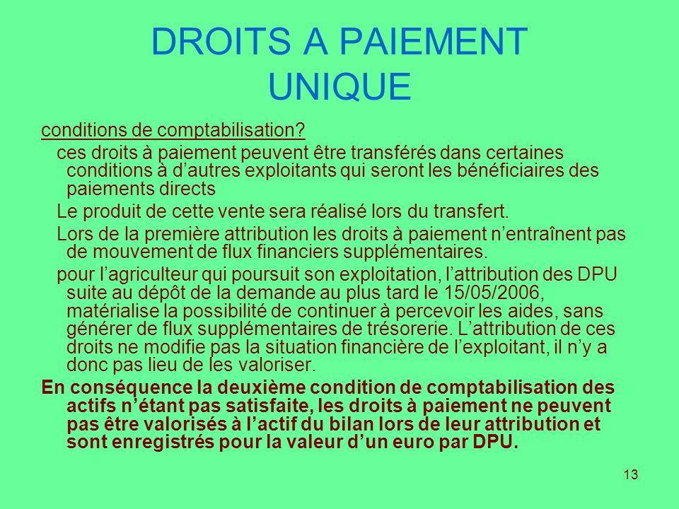 13 DROITS A PAIEMENT UNIQUE conditions de comptabilisation? ces droits à paiement peuvent être transférés dans certaines conditions à dautres exploita