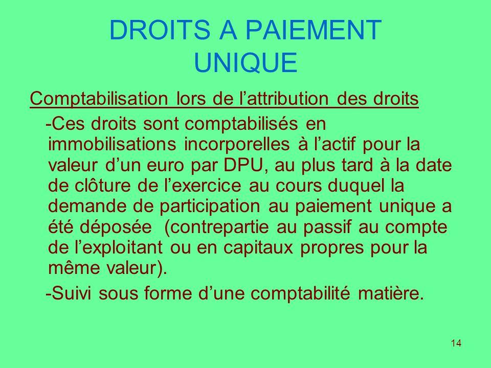 14 DROITS A PAIEMENT UNIQUE Comptabilisation lors de lattribution des droits -Ces droits sont comptabilisés en immobilisations incorporelles à lactif