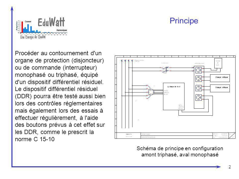 2 Principe Procéder au contournement d un organe de protection (disjoncteur) ou de commande (interrupteur) monophasé ou triphasé, équipé d un dispositif différentiel résiduel.
