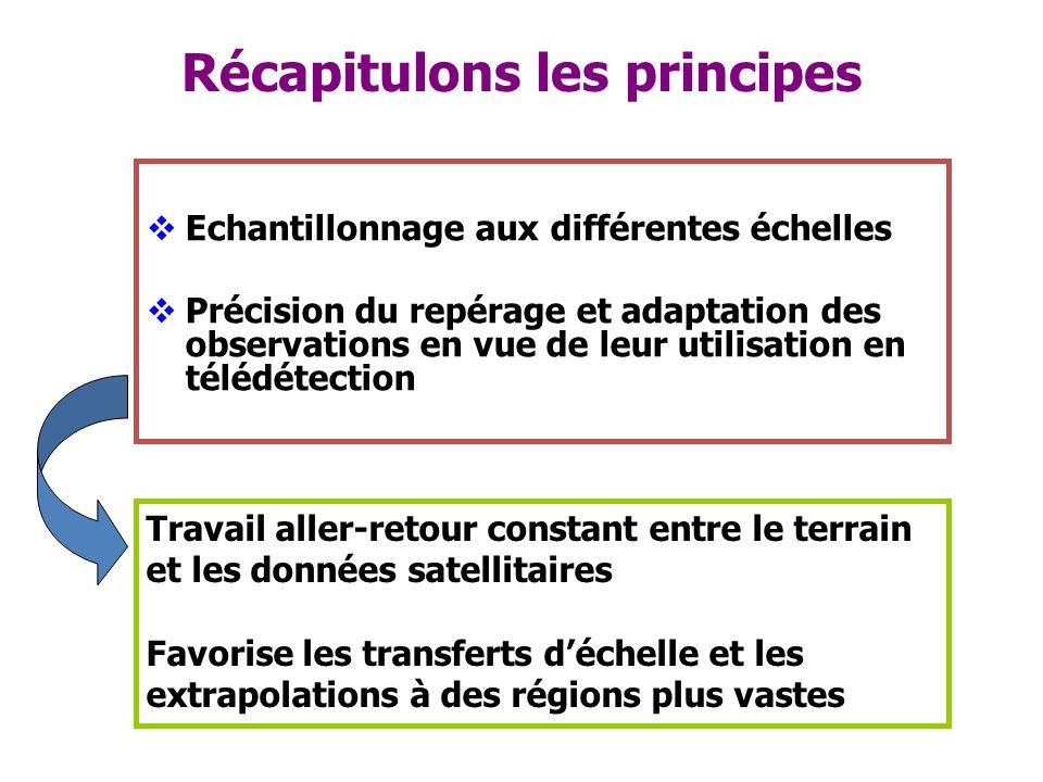 Récapitulons les principes Echantillonnage aux différentes échelles Précision du repérage et adaptation des observations en vue de leur utilisation en