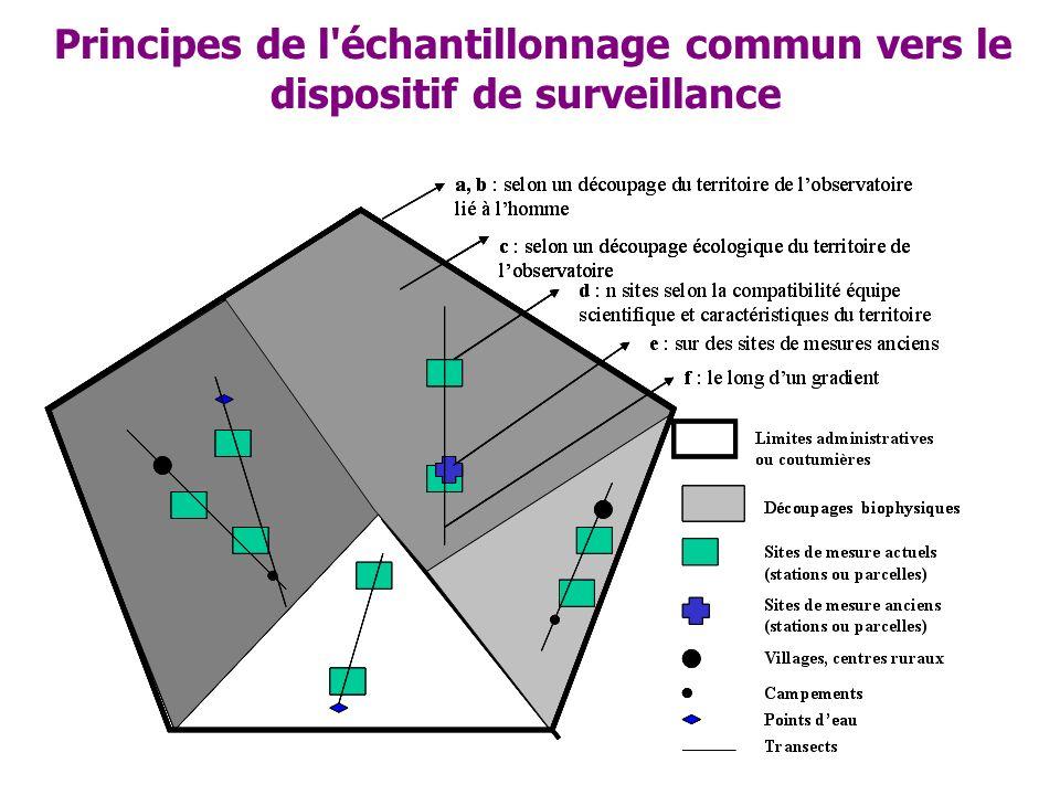 Principes de l'échantillonnage commun vers le dispositif de surveillance