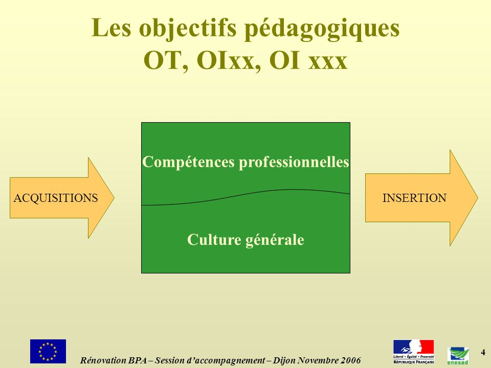 4 Les objectifs pédagogiques OT, OIxx, OI xxx ACQUISITIONS Compétences professionnelles Culture générale INSERTION Rénovation BPA – Session daccompagn