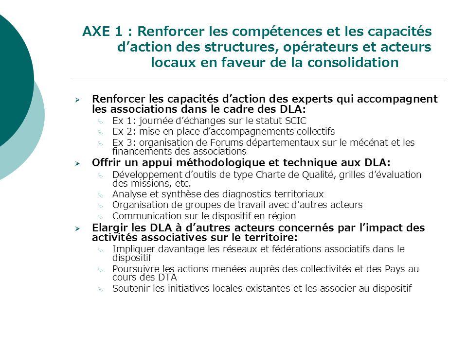 AXE 1 : Renforcer les compétences et les capacités daction des structures, opérateurs et acteurs locaux en faveur de la consolidation Renforcer les ca