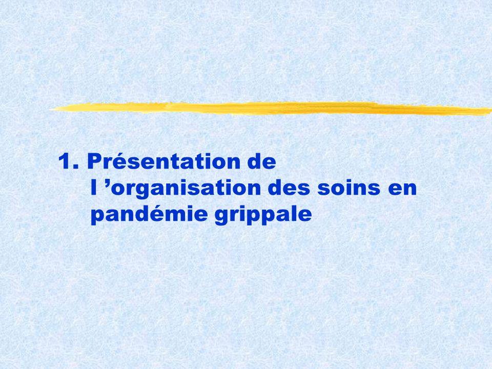 1. Présentation de l organisation des soins en pandémie grippale