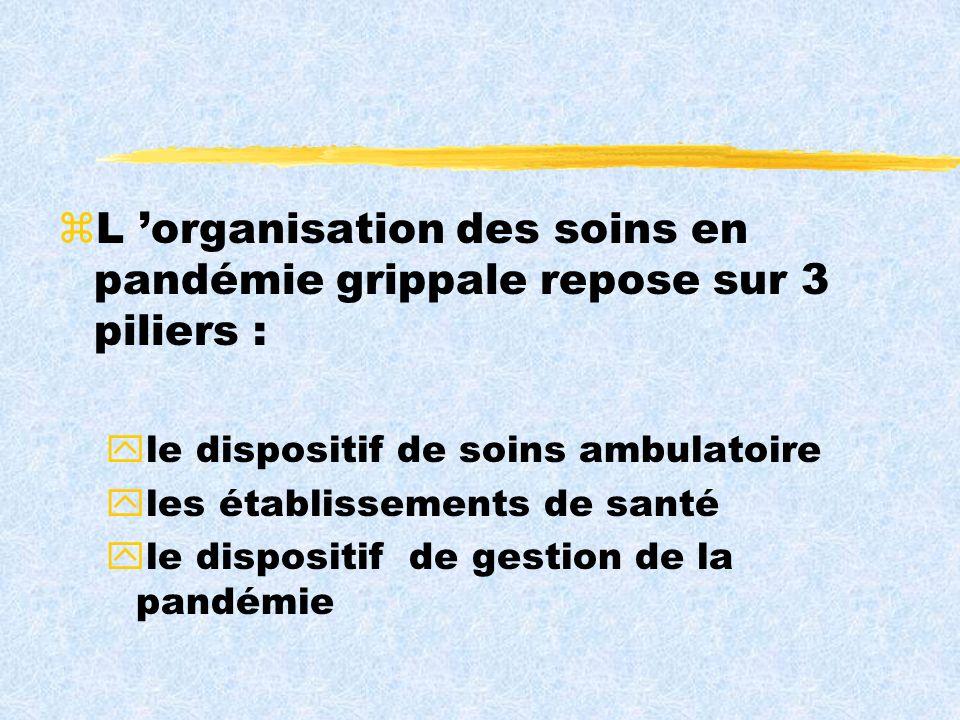 zL organisation des soins en pandémie grippale repose sur 3 piliers : yle dispositif de soins ambulatoire yles établissements de santé yle dispositif de gestion de la pandémie